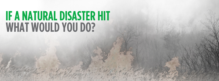 If a natural disaster hit what would you do?